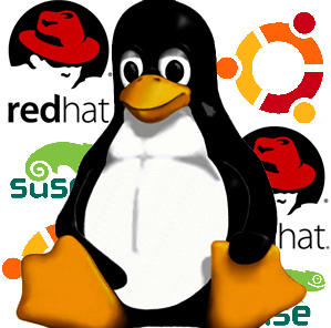 Linux based server consultation